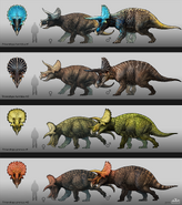 Triceratops Breeds