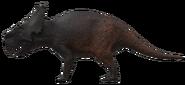 Pachyrhinosaurus The Isle