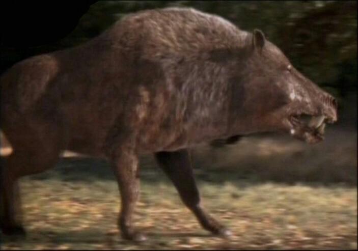 Central Auto Group >> Terminator Hippopotamus   Fanon Wiki   Fandom