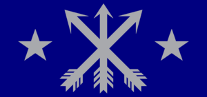 Silver Arrow flag