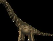 Cedarosaurus weiskopfae by spinoinwonderland-d764jdv