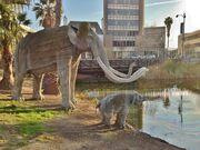 Urban Mammoths