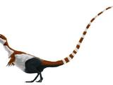 Compsognathus (SciiFii)