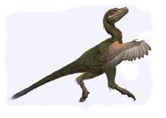 Dwarf Dromaeosaurid