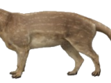 Mesonyx (SciiFii)