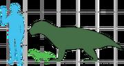 Simosuchus Size