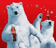 The coca cola bears