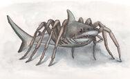 Spidersharkcmyk