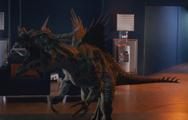 4x7 DracorexMain