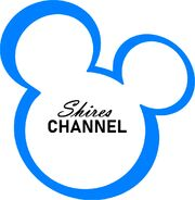 Shires Channel 2002-2010 Logo