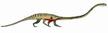 Dinocephalosaurus (SciiFii)