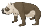 Flatnose Giant Wombat