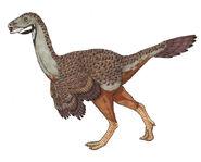 Caudipteryx by novablue-d5lgkd0
