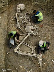 Indian giant dylanus fossilized skeleton being discovered