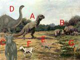 All Todays: Prehistoric-Holocene Species