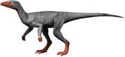 Eoraptor (SciiFii)