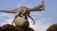 Dinosaur Paradise Oviraptor