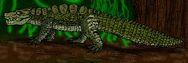 Trilophosuchus rackhami