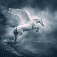 Unicorn ii by moroka323