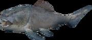 Dunkleosteus (SciiFii)