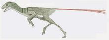Epidexipteryx (SciiFii)