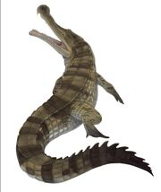 Sarcosuchus (SciiFii)