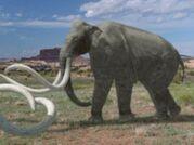 American Southern Mammoth
