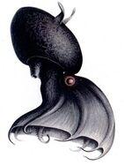 Matt-taibbi-fact-checkers-almost-killed-the-vampire-squid-line