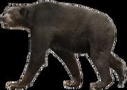 Short-faced bear (SciiFii)