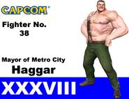 MvCA HaggarCard