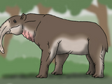 Elephant Tapir