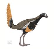 Similicaudipteryx web