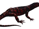 Protosuchus (SciiFii)