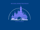 Michael Shires Television
