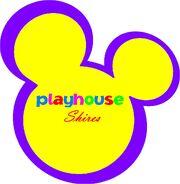 Playhouse Shires 2002-2011 Logo