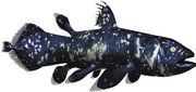 Coelacanthus (SciiFii)