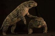 Simosuchus 2