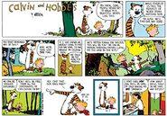 Calvin and Hobbes 6 Sep 1987
