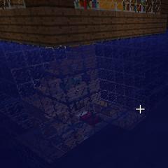 Vista del dormitorio bajo del agua