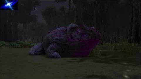 Ark Battle Swamp Night 4 Light Music Extended in 1 Hour Update 257
