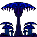 Mycelium Hills