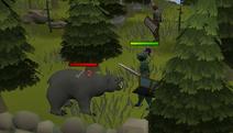 Speler dood beer