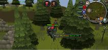 Speler bevecht de beer