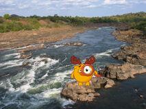Лосяш в Анголе