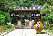 Лосяш в Корее