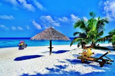 Карыч и Лосяш на курортном пляже в Индонезии