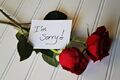 Angie-apology-websized.jpg