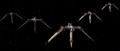 Eskadra Rand 3.png