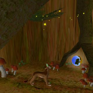 Wnętrze baobabu Rafikiego