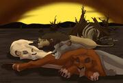 Serpen i lwy